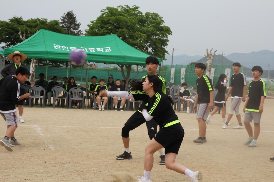 [일반] [2019.5.17.]체육대회의 첨부이미지 5